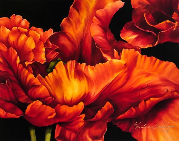 Orange Tulip II