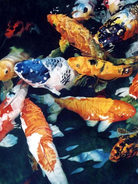 Koi Frenzy II (Big Blue)