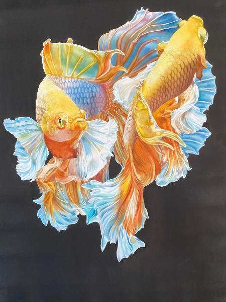 Beta Fish I